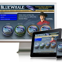 Blue Whale Website