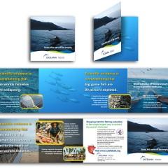 Oceana Overfishing Brochure