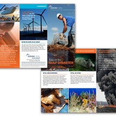 Oceana Gulf Disaster Brochure